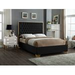 Lana Black Velvet Upholstered Tufted Platform Bed
